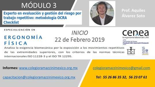 Experto en evaluación y gestión del riesgo por trabajo repetitivo: metodología OCRA Checklist