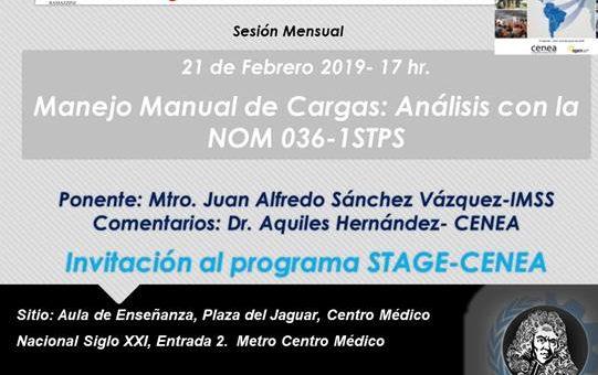 Manejo Manual de Cargas: Análisis con la NOM 036-1STPS